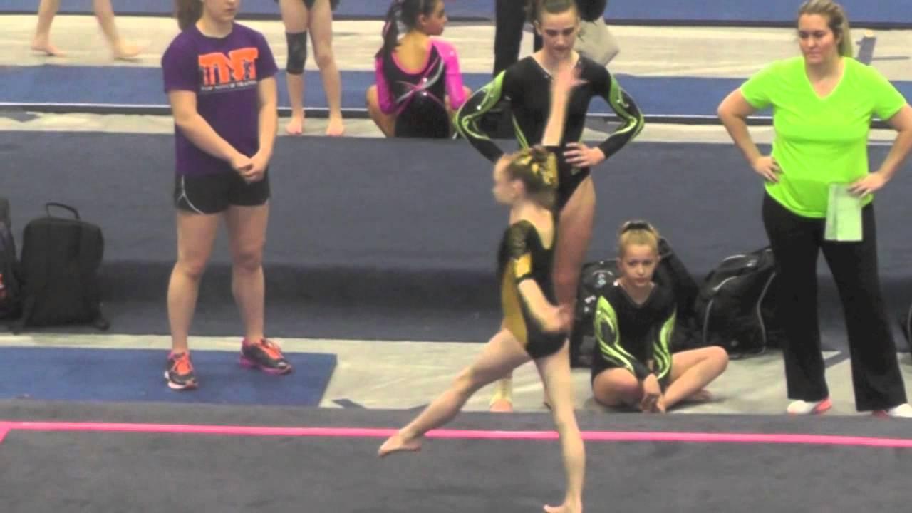georgia gymnastics state meet 2015 results