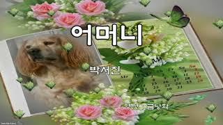 박서진 (박효빈)  🌷어머니🌷(가사)