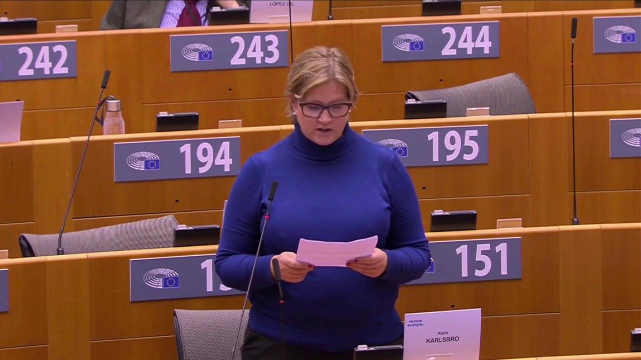 Karin Karlsbro 8 Oct 2020 plenary speech on Eritrea