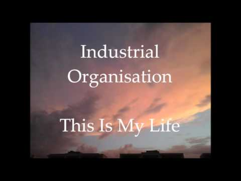 industrial organisation Functional organization this type of industrial organizational structure divides a staff into departments by duties a director or vice president in charge of each.