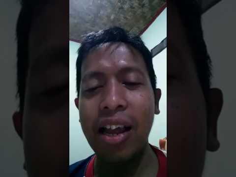 Video Lucu Korban Love Bird Ngekek Ngakak Abis Mp3