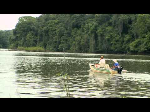 Giant Amazon Catfish - Episode 5 - The Fish Finder On The Rio Travessao
