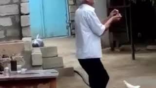 Kayf Kayf Öz kayfini tutan ağsaqqal kişi