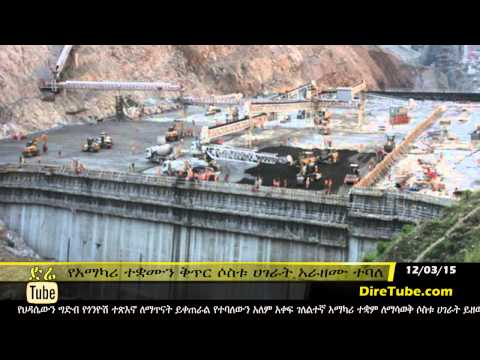 DireTube News - Naming consultancy office for Ethiopia dam to take more time