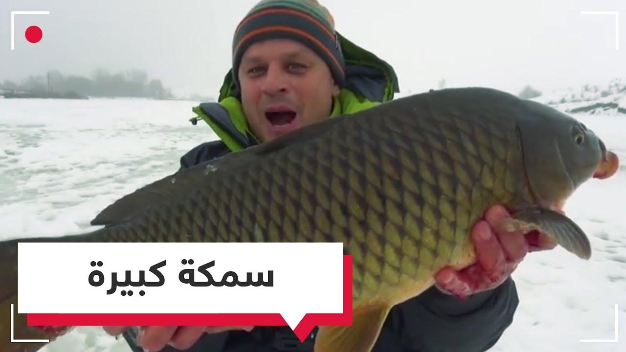 بالفيديو.. الصيد من المياه المتجمدة في روسيا  RT Play