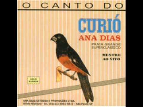 CD - Curió Ana Dias   Selo Marrom - Praia Super Classico [ ORIGINAL ]