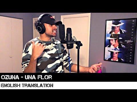 Ozuna - Una Flor | ENGLISH TRANSLATION