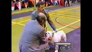 Bulldog Of The Year Uk 1992  Part 1
