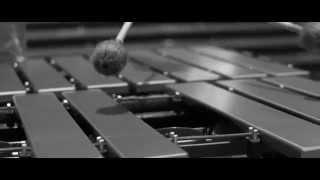 Masayoshi Fujita - The Vibraphonist