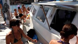 Animal X pe catamaran ( Ibiza)