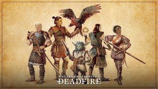 Прохождение: Pillars of Eternity II: Deadfire (Ep 2) Помогаем местным в Порт Мардже