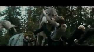twilight eclipse fight scene