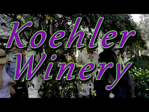 Koehler Winery Vineyard Walk with winemaker Colin Murphy