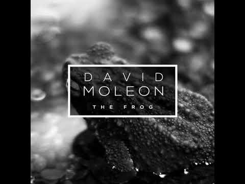 David Moleon - The Frog. TECHNO MUSIC