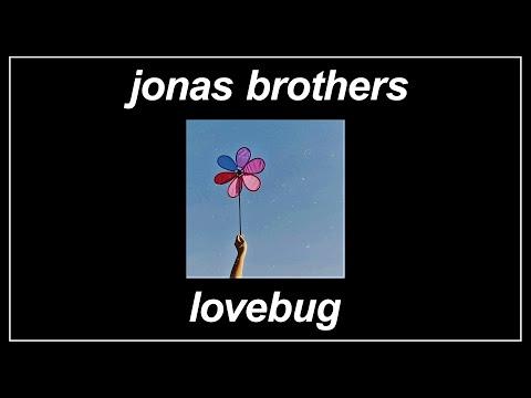 Lovebug - Jonas Brothers (Lyrics)