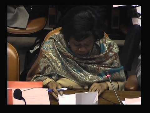 ACP Council of Ministers - Afternoon session Day 2