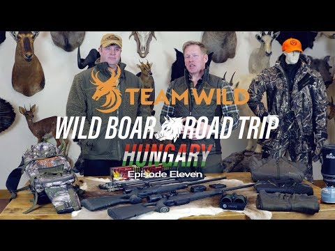 Wild Boar Hunting: The Final Reflection