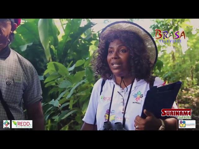 Suriname Overzee: Trots op ons bos deel 3