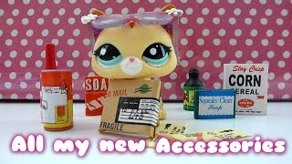 All my new LPS accessories !!