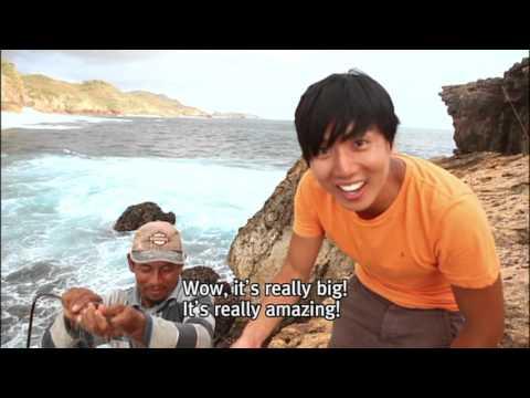 Java Part2. Menjang an Island an Ocean Paradise
