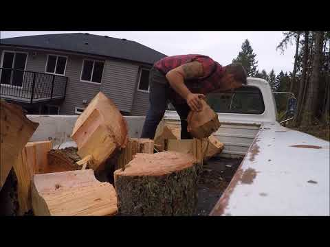 GETTING NEXT YEARS FIREWOOD IN