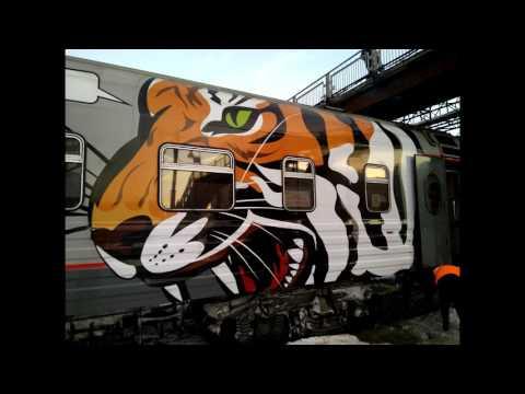 Train Vorkuta - Moscow.