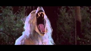 One of the Best WereWolf Videos Baby - Rob Zombie HD