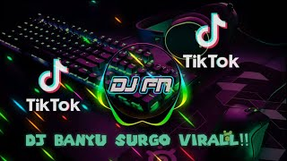 Download Dj Banyu Surgo Yang Lagi Virall Tik Tok Fulll Bass Horeg (Dj Banyu Surgo)