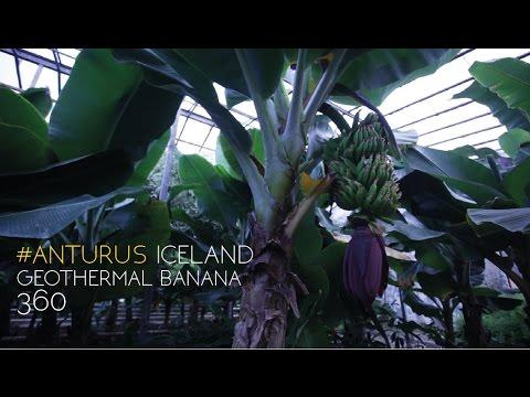 Geothermal Bananas 360 - #AnturusIceland
