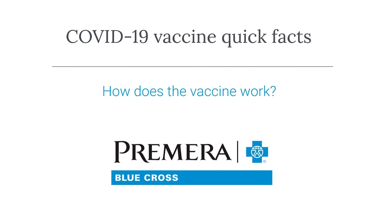 COVID-19 Q&A: How does the vaccine work?