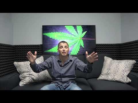 Lazarus Naturals CBD Oil Review - CBD Dectective