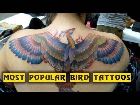 15 Most Popular Bird Tattoos | TATTOO WORLD