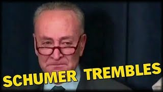 Schumer TREMBLES, Dreamers FREAK, as SCOTUS Gives Trump a WIN