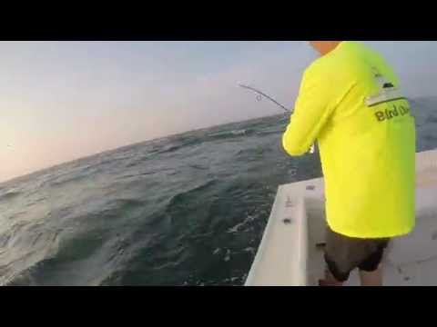 Striper Fishing Off Chatham CapeCod At The Rips (GoPro) (2k15)