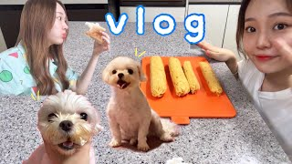 [VLOG]강아지 수제간식 만들기 | 강아지 닭가슴살 …