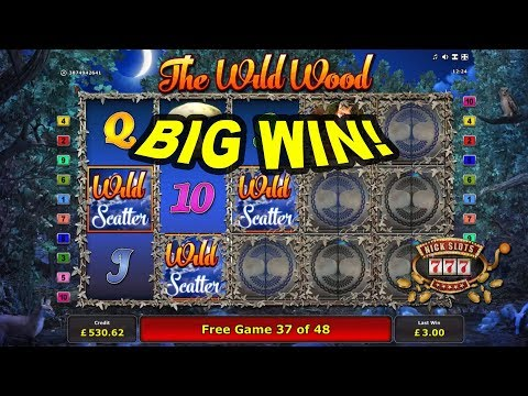 BIG WIN on The Wild Wood Slot - £1.50 Bet