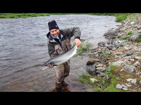 Laxfiske Finnmark 2017