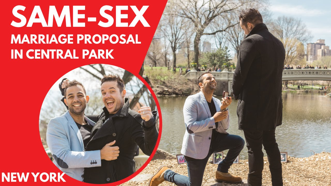 Gay marriage proposals