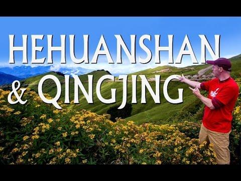 {Trip} QINGJING Farm and MT. HEHUAN (HEHUANSHAN)/清境農場 & 合歡山
