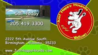 Just Happy Hounds Midtown Doggie Daycare Birmingham Dr Chandler Mcgee Welcome