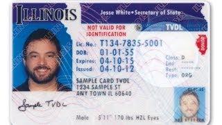 Illinois Temporary Visitor Driver