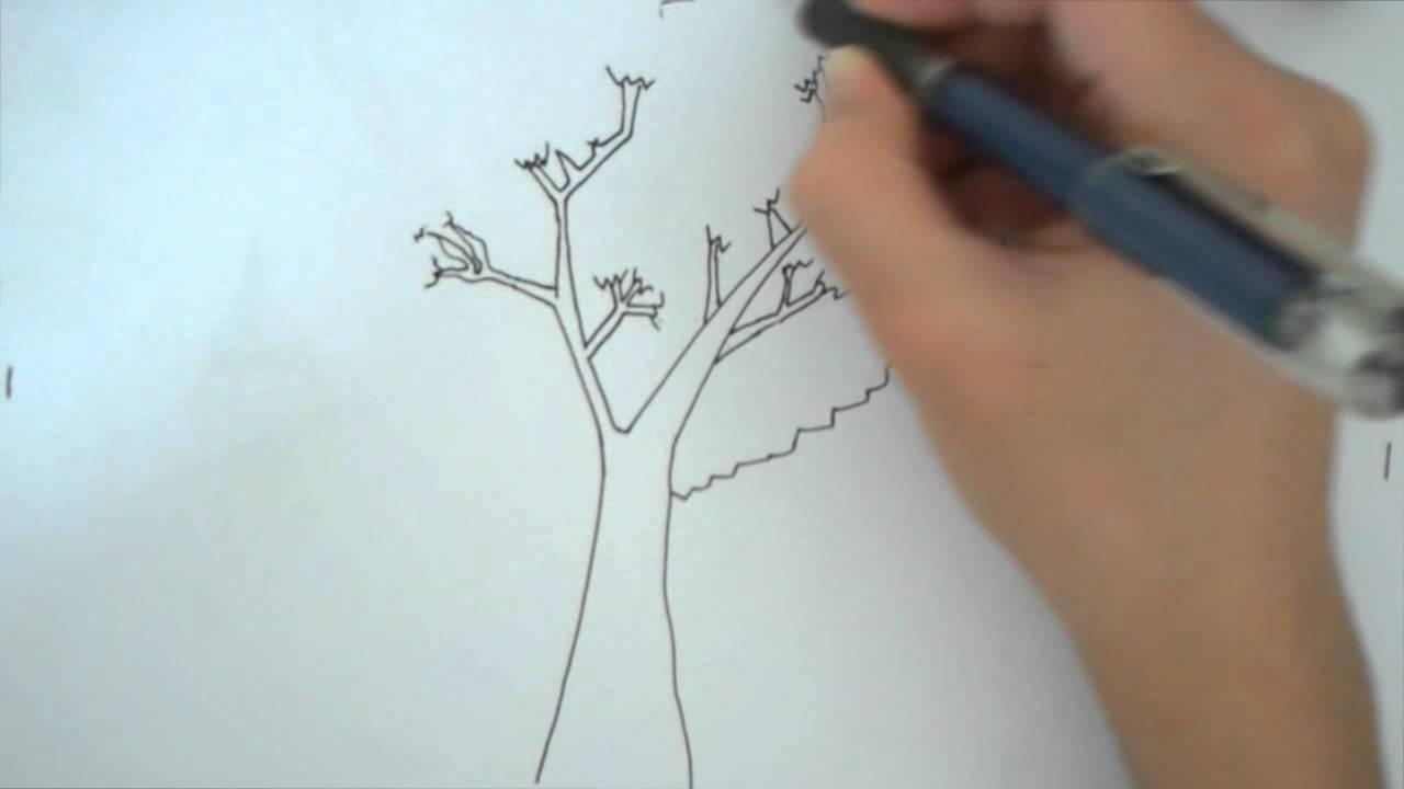 Sha5mata كيفية رسم شجرة Youtube