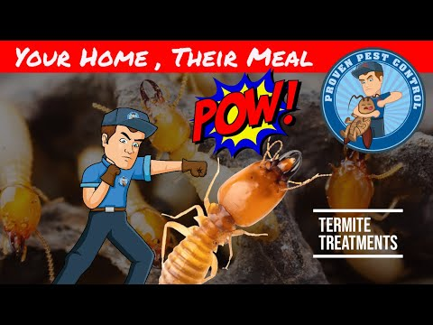 Termite Chemical Barrier - Termite Prevention and Treatment