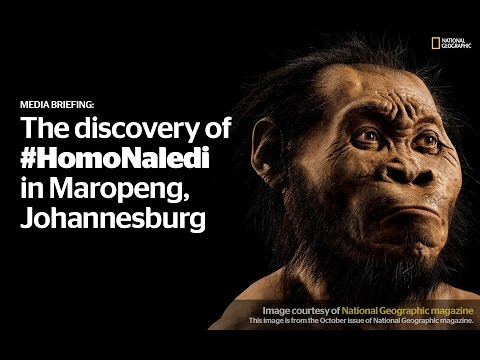 MEDIA BRIEFING: New fossil find unveiled in Maropeng, Johann