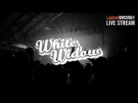 LW Live Stream - Label Spotlight on White Widow Records