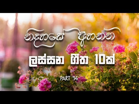 Beautiful 10 Sinhala Classic Songs - old Songs - TOP 10 || Jukebox || Part 14 || MUSIC HUB SL |
