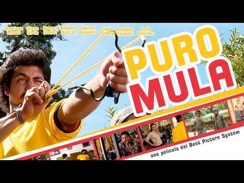 PURO MULA