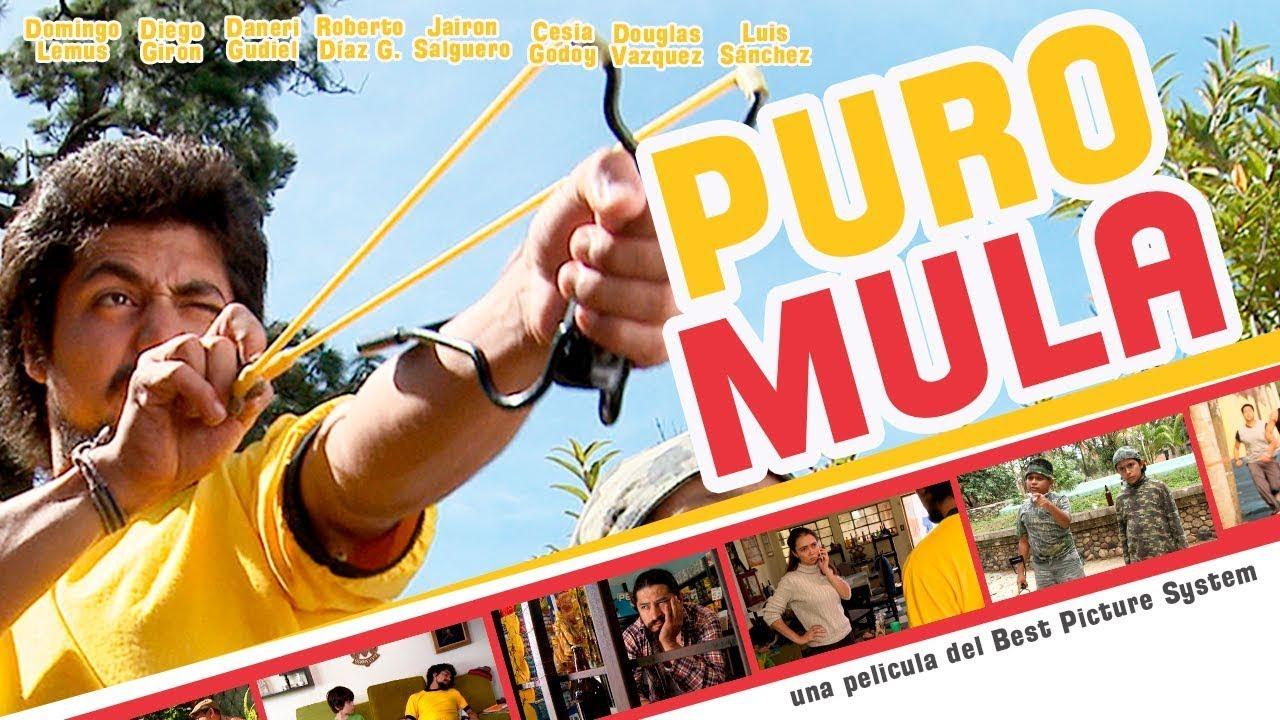 Download PURO MULA - película
