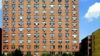 CD280 in the East Village - East Village Apartments for Rent