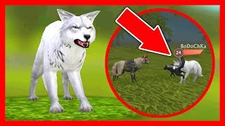 СИМУЛЯТОР ВОЛКА #11 ОНЛАЙН ВЕРСИЯ ИГРЫ Жизни Зверей WildCraft про котят лис собак ДЕТСКИЕ ИГР